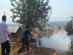 Bingöl'de büyük yangın