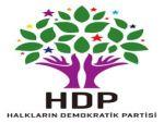 HDP heyetê dişîne Şirnexê