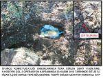 Bitlis'te iki adet EYP imha edildi