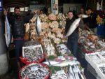 Denizi olmayan Gaziantep'te her gün 65 çeşit balık sergileniyor