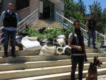 Mardin'de narkoterör operasyonu