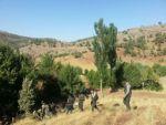 Şırnak'ta pkk'lılar kaçırdıkları çobanı öldürdü