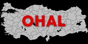 BM'den Türkiye'ye 'OHAL derhal bitsin' çağrısı