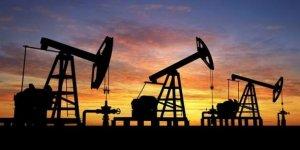 Petrol üretiminde rekor