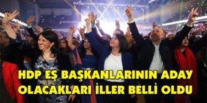 HDP eş başkanlarının aday olacakları iller belli oldu