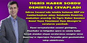 HDP'nin Cumhurbaşkanı adayı Demirtaş Tigris Habere konuştu