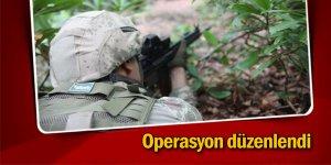 Şırnak'ta operasyon düzenlendi