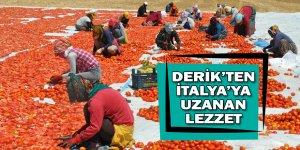 """""""5 bin kadın istihdam ediliyor"""""""