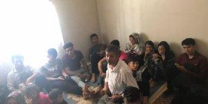 202 kaçak göçmen yakalandı
