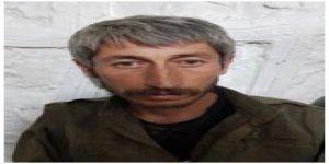 Şırnak'ta örgütün üst düzey yöneticisi yakalandı