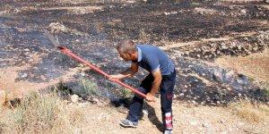 Midyat'ta anız yangını