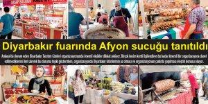 Diyarbakır fuarında Afyon sucuğu tanıtıldı