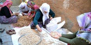 Siirt'li kadınlardan zorluklara karşı örnek mücadele