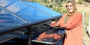 Güneş paneliyle kuruttuğu 'çıtır çilek'lerine pazar arıyor