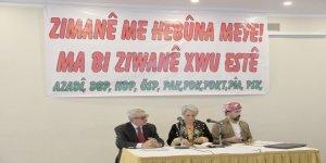 Dokuz Kürt Partisinin Düzenlediği 'Dil Çalıştayı' başladı