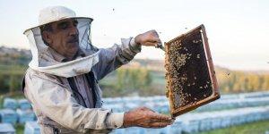 Bingöllü arıcı kışı geçirmek için arılarını Diyarbakır'a getirdi