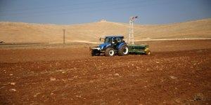 GAP çiftçisinin ekim telaşı
