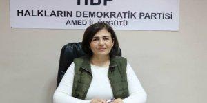 HDP'ye Diyarbakır'da 900 aday başvurdu