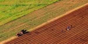 Devlet 2019'da tarıma 16,1 milyar lira destek verecek