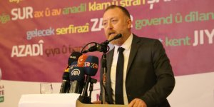 Temelli, Kayyumlar'a ilişkin raporu Diyarbakır'da açıkladı