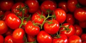 Türkiye'den giden domatesi Ukrayna geri gönderdi