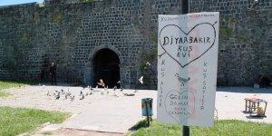 Tarihi surların içinde kuş evi
