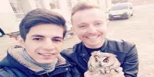 Diyarbakır'da boynuzlu baykuşla selfi