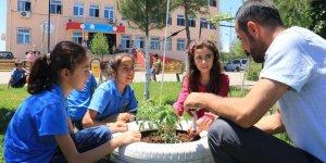 Okul bahçesinde hayvanları ve bitkileri öğreniyorlar