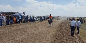 Diyarbakır'da rahvan at yarışları yapıldı