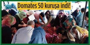 Diyarbakır'da domates 50 kuruşa indi!