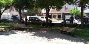 Diyarbakır'da parkta oturan 2 kişiye silahlı saldırı