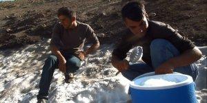Topladıkları karla su ihtiyaçlarını karşılıyorlar