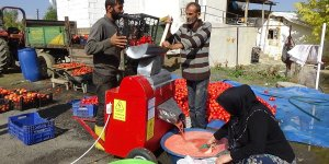 Muş'ta bir çiftçinin 70 ton domatesi elinde kaldı!