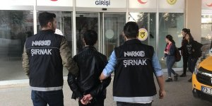 Cizre'de narkotik operasyonu: 6 tutuklama
