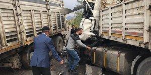 Siirt'te iki tır çarpıştı: 2 yaralı