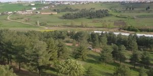 Diyarbakır'da Kent Ormanı'nın yok edilmesine yargı set çekti