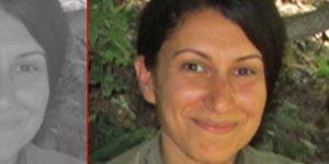 VİDEO - Gri kategoride aranan PKK'li Tuncer yakalandı
