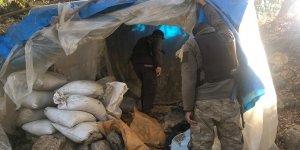 Lice ve Hani kırsalındaki operasyon sona erdi