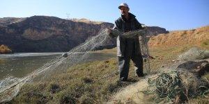 Dicle Nehri'ndeki balık türlerinde azalma