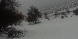 Diyarbakır'a ilk kar düştü
