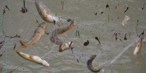 Şırnak'ta eksi 18 derecede balık avı