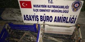 Nusaybin'de rögar kapağı çalanlaryakalandı