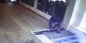 Şanlıurfa'da camiden ayakkabı hırsızlığı kameraya yansıdı