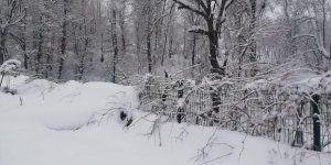 Hakkari Çukurca'da kar yağışı