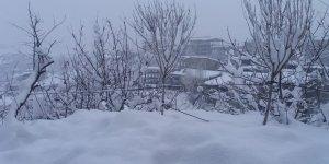 Hakkari'de 259 yerleşim yerine kar engeli