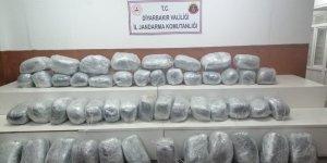 VİDEO - Diyarbakır Lice'de 250 kilo esrar yakalandı