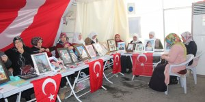 Diyarbakır'daki annelerin evlat nöbeti 153'üncü gününde