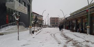 Kulp'ta okullar kar nedeni ile bir gün tatil edildi