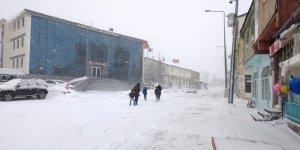 Bingöl'de 3 ilçede kar tatili