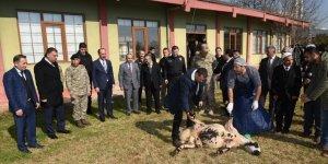 Türkiye'de yaşanan olayların son bulması için kurban kesildi